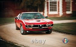 Kühlerherz Calandre Rein Alfa Romeo Montreal 70-77 Chrome Rare New